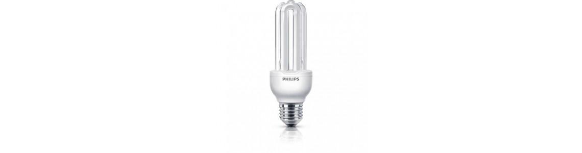 Economy bulbs